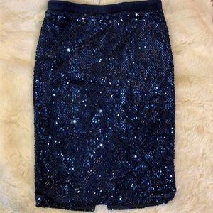 Velvet & Sequin Navy Blue Fitted Pencil Skirt